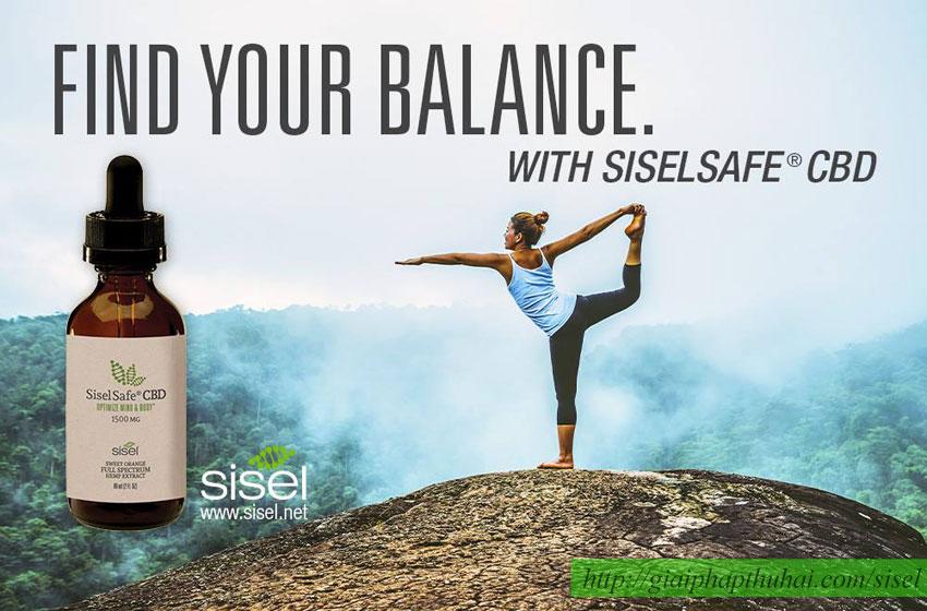 SiselSafe CBD giúp bạn cân bằng cuộc sống
