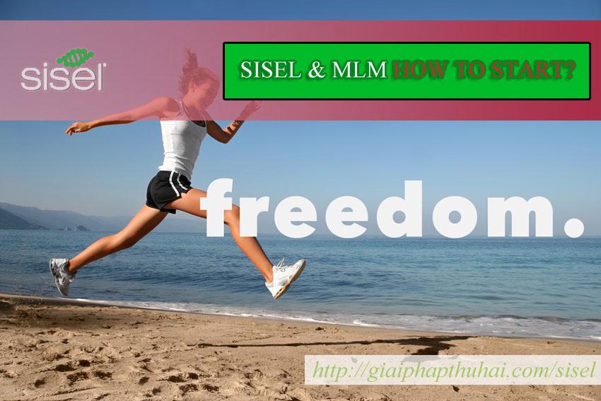 Người mới bắt đầu với SISEL và MLM như thế nào?